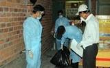 Ninh Thuận công bố hết dịch cúm H5N1 trên chim yến