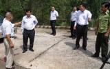 """""""Công ty TNHH Bích Hương có nhiều nỗ lực góp phần phủ xanh đồi trọc"""""""