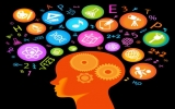 Não thiên tài nặng gấp rưỡi não người thường
