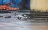 Quảng Ninh: Gió lốc giật gây những thiệt hại đầu tiên