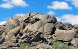 Tranh khắc đá hàng nghìn năm tuổi