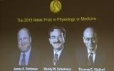 3 nhà khoa học Mỹ, Đức chia nhau giải Nobel y khoa 2013