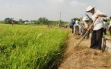 Cùng nông dân bảo vệ môi trường