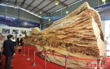 Tác phẩm điêu khắc trên gỗ dài nhất thế giới