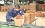 Tái chế rác tạo ra sản phẩm xanh