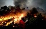EU chi gần 370 triệu euro tăng cường ứng phó thảm họa