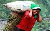 77 việc cấm lao động nữ: Nhiều chị em thất nghiệp...