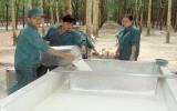 Công ty Cổ phần Cao su Phước Hòa: Vững vàng trong gian khó