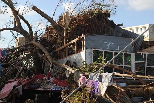 haiyan-trees-houses-8711-1388249648.jpg