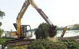 Biwase vớt 220 tấn lục bình trên sông Sài Gòn