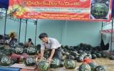 Rực rỡ chợ hoa Xuân Giáp Ngọ Bình Dương 2014