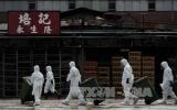Virus H7N9 có nguy cơ lan ra ngoài biên giới Trung Quốc