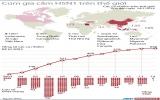 Việt Nam trong tốp có ca nhiễm H5N1 nhiều nhất thế giới