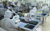 Việt Nam là trọng điểm đầu tư của doanh nghiệp Nhật