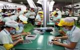 Việt Nam gia nhập Công ước 187 về an toàn lao động