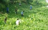 Xã An Sơn, TX.Thuận An:  Tích cực vận động nhân dân bảo vệ môi trường