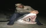 Câu được cá mập hơn 360kg
