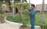 Trường Trung cấp nghề Dĩ An: Khai giảng lớp đào tạo dáng và chăm sóc cây cảnh