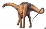 Phát hiện hóa thạch loài khủng long lớn nhất từ trước tới nay