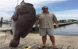 Con cá mú khổng lồ có cân nặng hơn trăm ký, cao vượt đầu người