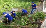 Ra quân 7 đợt xử lý lục bình trên sông