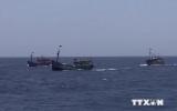 """""""Mang áo giáp"""" cho tàu vươn khơi, bám biển an toàn"""