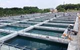 Nhà máy nước 45.000m3 từ nguồn vốn cổ phần chuẩn bị đi vào hoạt động