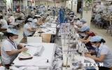 Kinh tế Việt Nam nỗ lực vượt qua những thách thức mới
