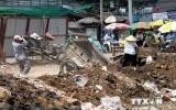 Việt Nam hướng tới giảm thiểu và loại bỏ chất ô nhiễm hữu cơ