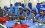 Ban Kinh tế - Ngân sách HĐND tỉnh: Thẩm tra kết quả phát triển kinh tế - xã hội 6 tháng đầu năm