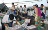 Tổ quốc bên bờ sóng : Quyết bám biển để bảo vệ chủ quyền
