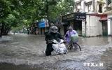 Công điện của Thủ tướng Chính phủ chỉ đạo đối phó bão Rammasun