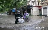 Phó Thủ tướng chỉ đạo tập trung sơ tán dân trước cơn bão