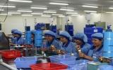 Tập trung tháo gỡ khó khăn, thúc đẩy sản xuất, kinh doanh