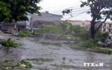 EVN khẩn trương khắc phục sự cố mất điện do bão số 2 gây ra