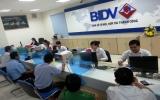 Phòng giao dịch Nam Tân Uyên - BIDV Bình Dương:    Đồng hành cùng địa phương phát triển
