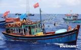 Ngư dân trên ngư trường Hoàng Sa kiên cường bám biển