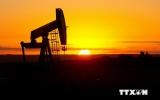 Giá dầu giảm bất chấp tin về GDP và dự trữ dầu thô của Mỹ