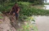 Nạn khai thác cát trái phép trên sông Sài Gòn: Ruộng vườn kêu cứu!