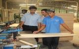 Hơn 1.400 lao  động được đào tạo nghề chế biến gỗ