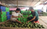 Huyện Bắc Tân Uyên: Bắt nhịp để phát triển