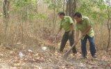 Rừng phòng hộ đầu nguồn Dầu Tiếng: Quản lý bền vững, khai thác tiềm năng