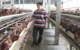Làm giàu từ mô hình chăn nuôi tổng hợp