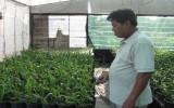 Phường Chánh Nghĩa, TP.Thủ Dầu Một: Hỗ trợ nông dân phát triển nông nghiệp đô thị hiệu quả