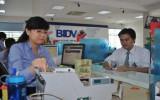 Mở rộng triển khai dịch vụ nộp thuế điện tử
