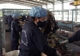 Quản lý và thu gom, tái chế chất thải rắn: Khó cũng phải hoàn thành