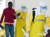 Italy bước đầu phát triển thành công vắcxin kháng virus Ebola