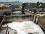 Khởi công Dự án thoát  nước và xử lý nước thải thành phố Trà Vinh