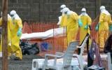 WHO cảnh báo dịch Ebola không có dấu hiệu chững lại