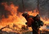 Mỹ: Hỏa hoạn hoành hành dữ dội, thiêu rụi hơn 360km2 rừng